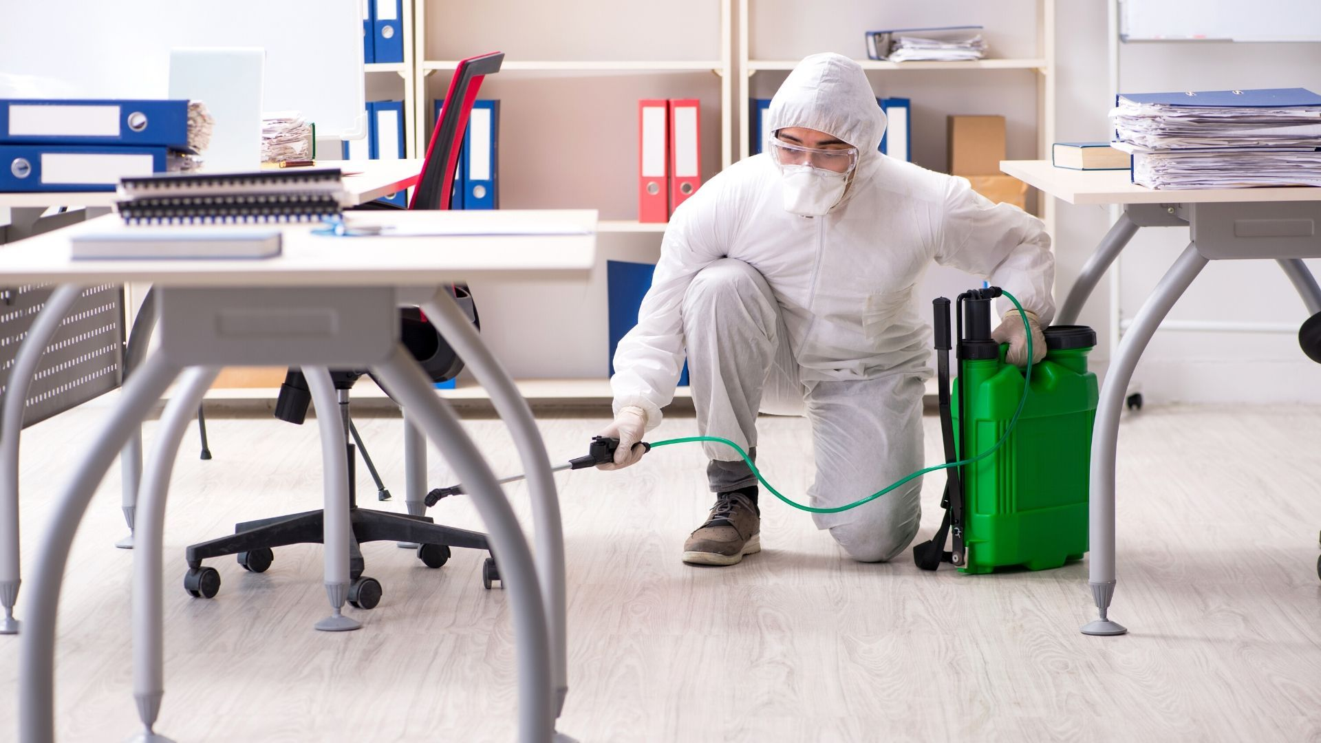 Empresa control de plagas en Tenerife para fumigar y desinfectar negocios